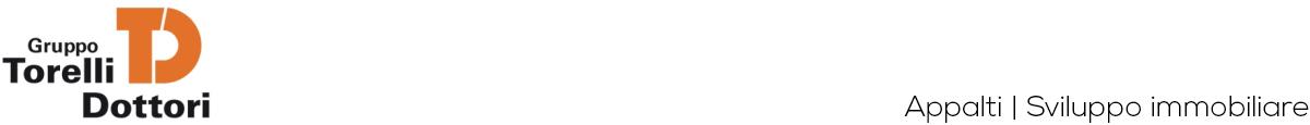 Gruppo Torelli Dottori Logo